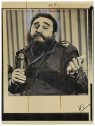 David Birkin - Iconographies, Fidel Castro (2013)