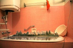 Julia Willms - Urban Households
